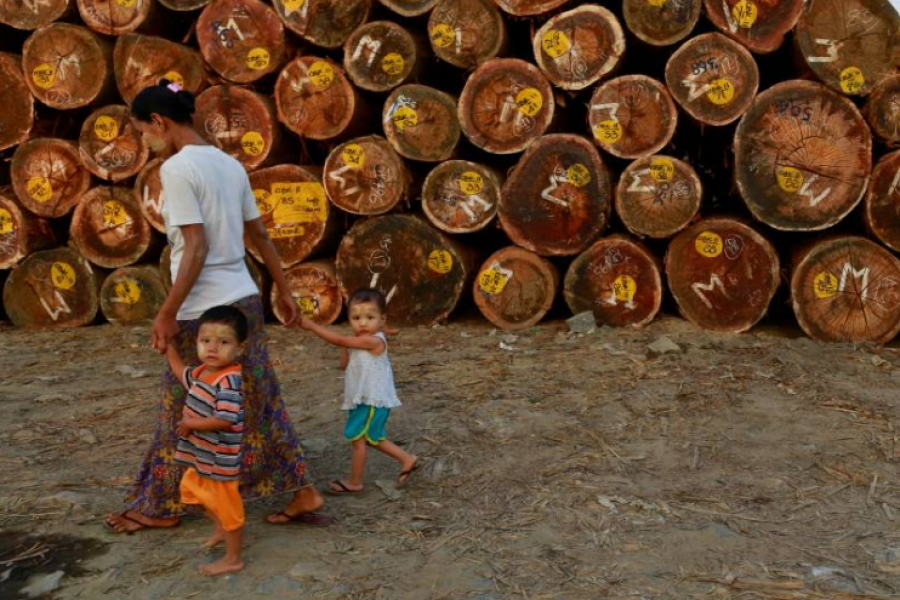 """Reuters Op-Ed: To avoid the """"conflict trap,"""" Myanmar should protect its forests"""