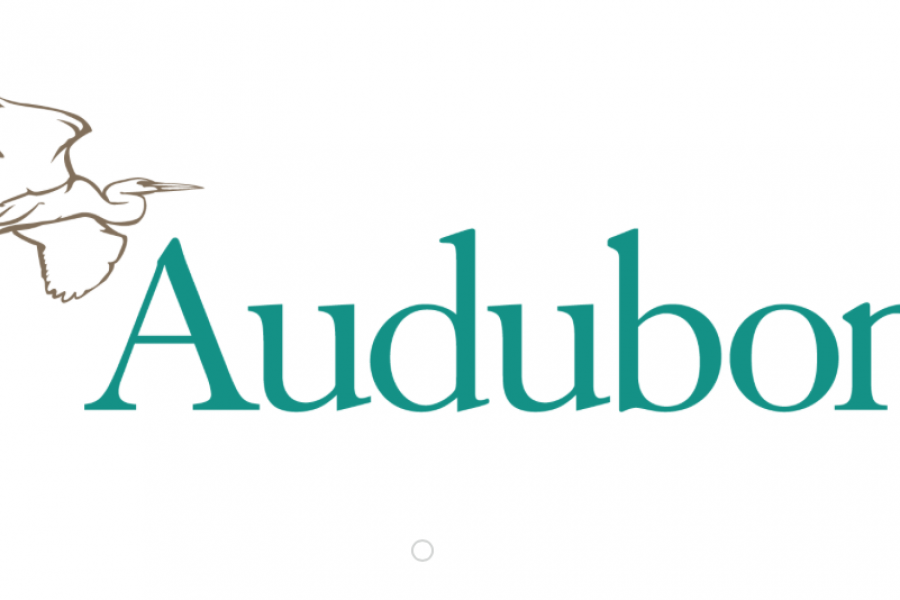 NATIONAL AUDUBON SOCIETY RINGS THE NYSE OPENING BELL