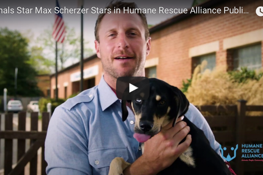 Wash Post: Here's a message from Max Scherzer and a very good dog named Glee